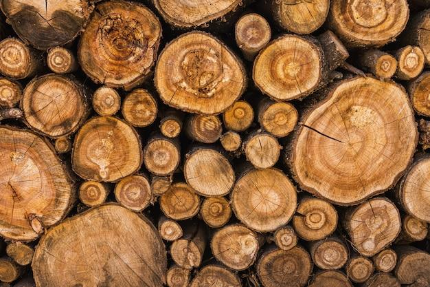 Пиленные стволы деревьев сложены в поленницу