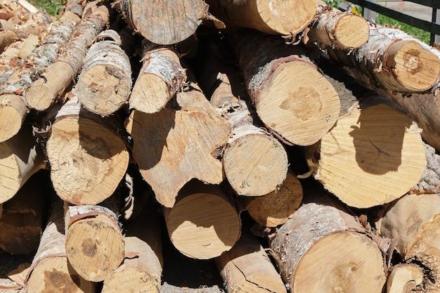 톱질한 나무, 장작 톱질을 위한 통나무, 나무의 질감과 나무 껍질 클로즈업