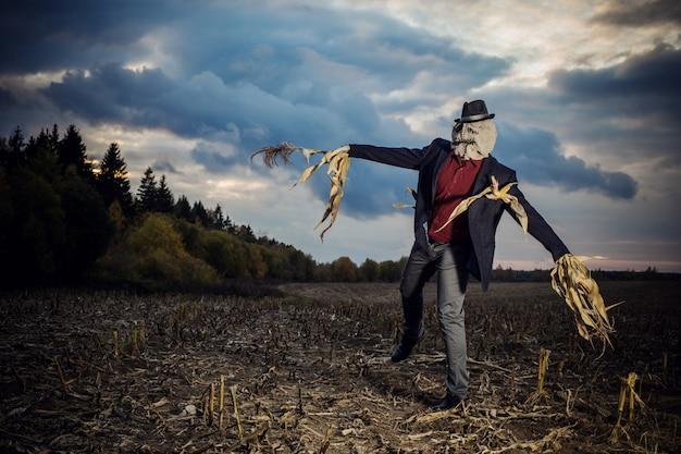 Пугало стоит в осеннем поле на фоне вечернего неба