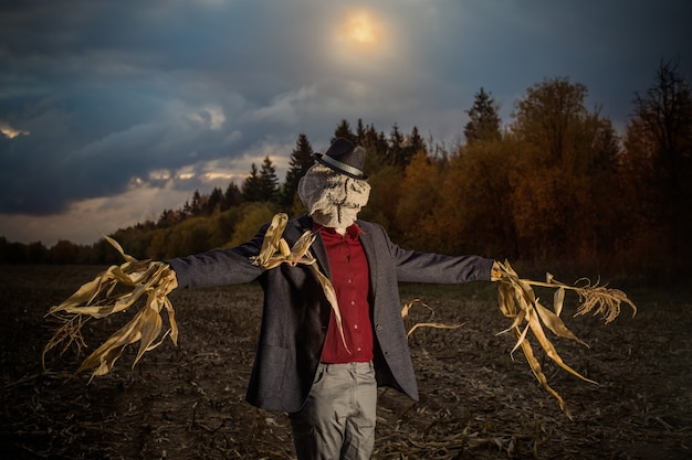 Чучело стоит в осеннем поле на фоне вечернего неба