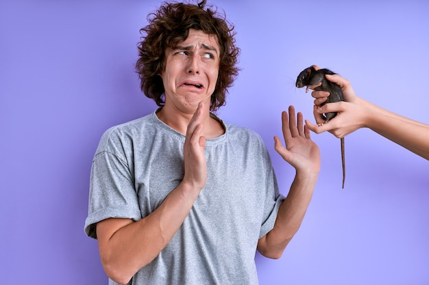 Испуганный мужчина боится грызунов, женские руки приближают крысу к парню, кудрявый парень пугается