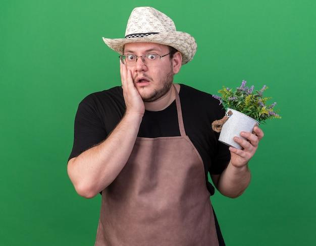 Giovane giardiniere maschio spaventato che indossa il cappello di giardinaggio che tiene il fiore in vaso di fiori che mette la mano sulla guancia isolata sulla parete verde