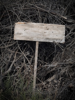 무서운 빈 나무 플라크는 마른 나뭇가지에 놓여 있습니다. 공간을 복사합니다. 할로윈.