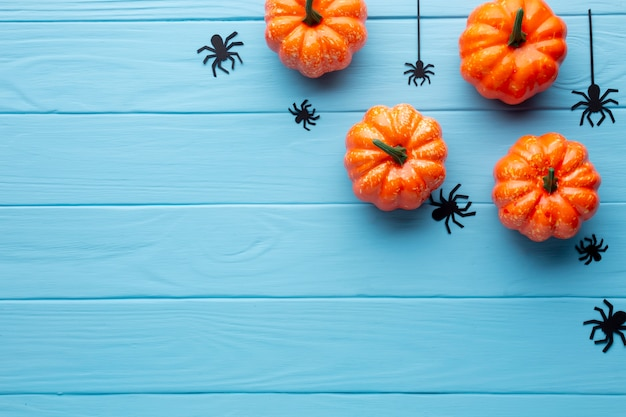 Scary halloween spiders and pumpkins