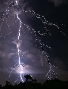 Scary real lightning striking over the forest at night