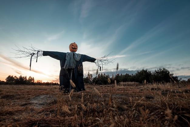 Страшное чучело с головой тыквы хеллоуина в поле на заходе солнца.