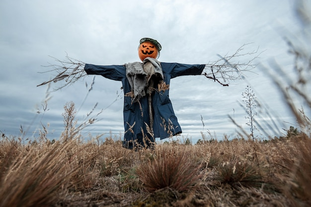 A scary scarecrow with a halloween pumpkin head in a field in cloudy weather.