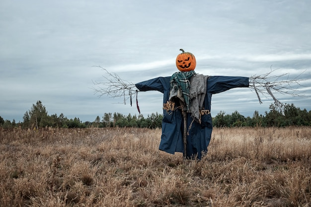 scary-scarecrow-with-halloween-pumpkin-h