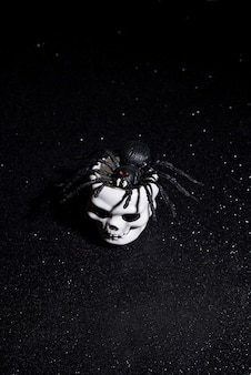 Scary spider coming out a skull for halloween