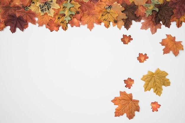 Scattered fall leaves frame side
