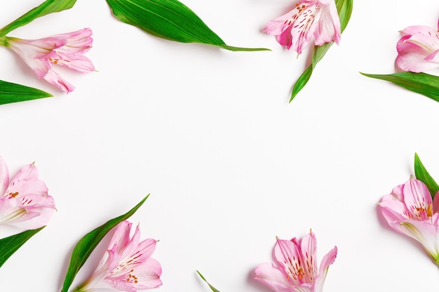 Scattered fresh lily flowers and leaves beautiful frame background.