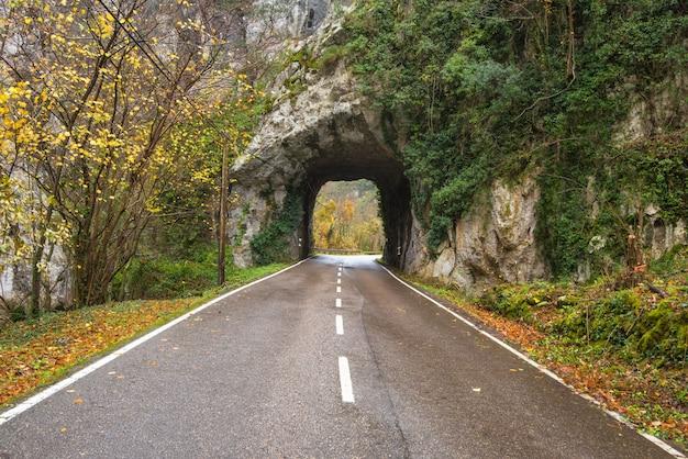 Каменная дорога тоннеля в горе scenary в природном парке somiedo, астурии, испании.
