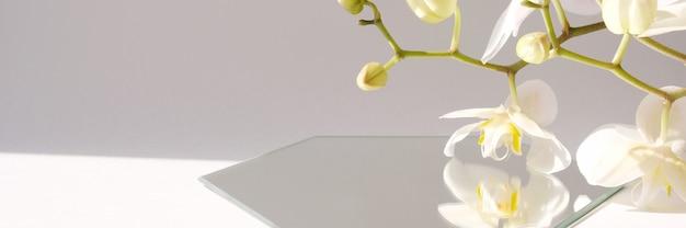 기하학적 형태와 트렌디 한 그림자가있는 장면