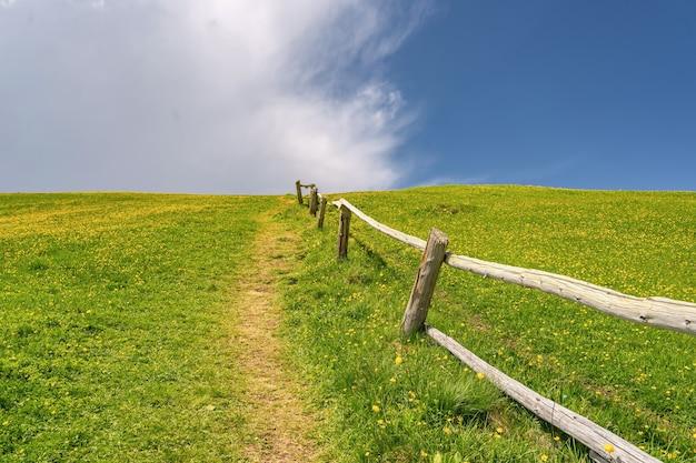 緑の丘にトレイルのある風景アルプス