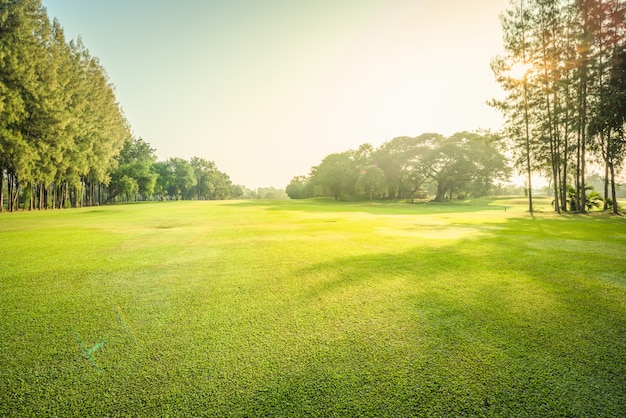 Пейзаж зеленый гольф и луг с солнечным светом утром