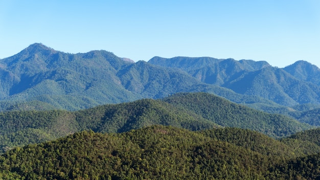 Scenery of the mountains in tropical rainforest abundant nature in asia thailand aerial view drone shot.