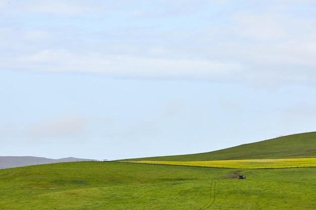 アメリカ合衆国カリフォルニア州ペタルマの澄んだ空の下のなだらかな牧場の風景