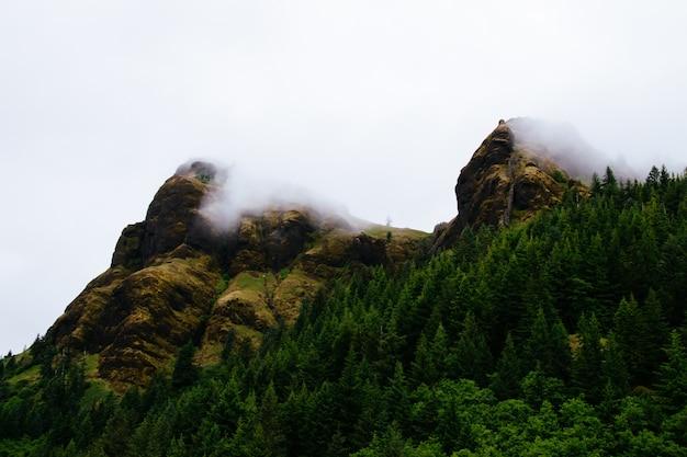 Пейзаж дыма, выходящего из горы рядом с лесом, полным зеленых деревьев