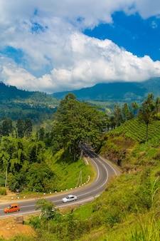 푸른 언덕과 차 농장을 통과하는 풍경 도로. 스리랑카 자연 풍경입니다.