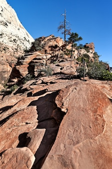 Scenery in zion national park along angels landing trail, usa