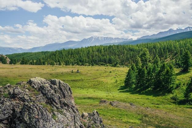 曇り空の下の雪山を背景に、未舗装の道路と丘の上の森と緑の山の谷と風光明媚な高山の風景。緑の丘の上に地衣類と岩のある鮮やかな山の風景。