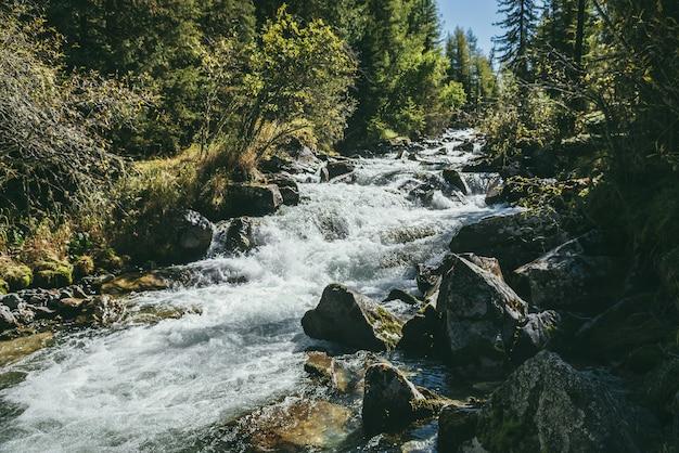 日差しの中で野生の森の強力な山川と風光明媚な高山の風景。晴れた日には木々や茂みに囲まれた美しい川のある鮮やかな秋の風景。乱流の急流の水しぶき。