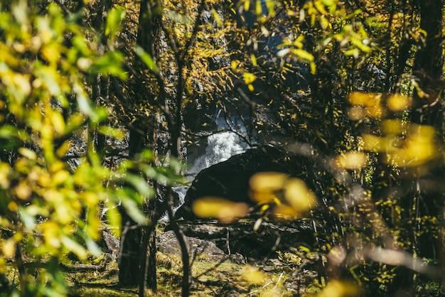 화창한 가을 숲의 바위 사이에 있는 아름다운 폭포에 이르는 노란 잎을 통해 경치 좋은 고산 전망. 가을철 햇살에 노란 단풍과 물줄기가 있는 다채로운 산 풍경.