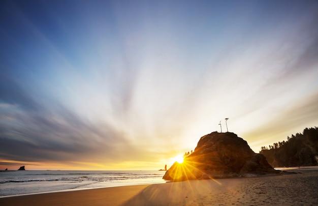 米国ワシントン州オリンピック国立公園の風光明媚で厳格な太平洋岸。海の岩とビーチの大きな丸太。
