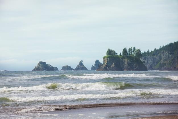 미국 워싱턴 주 올림픽 국립 공원의 아름답고 험준한 태평양 연안. 바다의 바위와 해변의 큰 통나무.