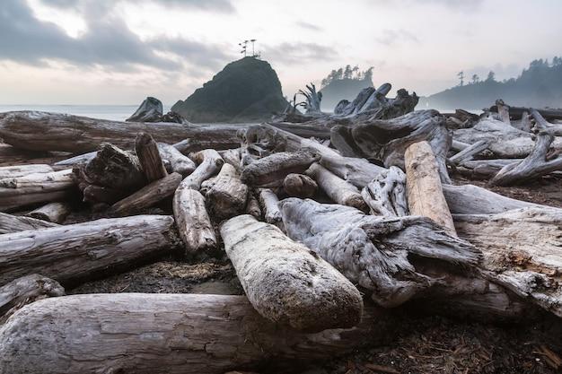 アメリカ合衆国ワシントン州オリンピック国立公園の風光明媚で厳格な太平洋岸。海の岩とビーチの大きな丸太。