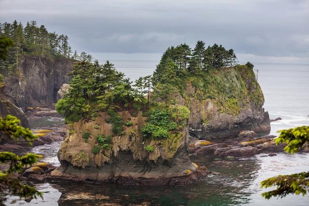 オリンピック国立公園の風光明媚で厳格な太平洋岸