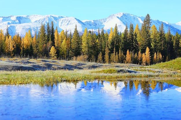 風光明媚な秋の風景の木と森の川と湖