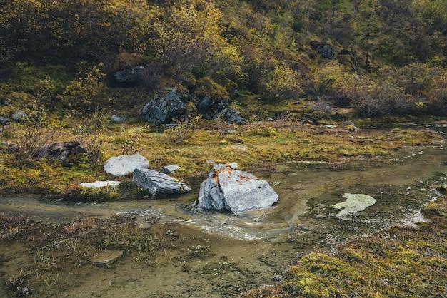 황금 식물 사이에 큰 돌이 있는 아름다운 가을 풍경. 가을에 황금 관목과 나무 사이 개울에 있는 아름다운 바위. 풀, 이끼, 덤불 사이의 작은 시냇물.