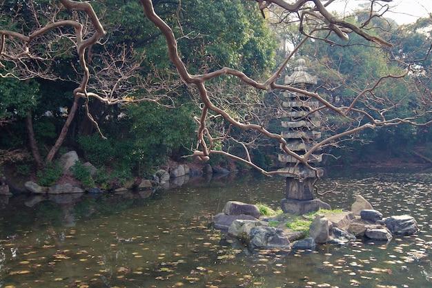 Живописные осенние ветви деревьев над водами пруда в саду киото дзэн
