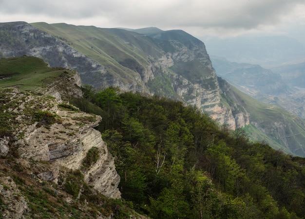 どんよりした空の下の深い峡谷に山の川がある風光明媚な白人の緑の風景。