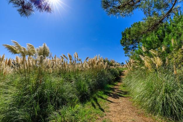 Живописные прибрежные тропы испании