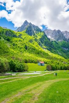 高い峰の岩を背景に風光明媚な緑の牧草地。