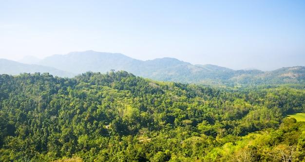 風光明媚な緑の山々と青い空、セイロン。スリランカの風景