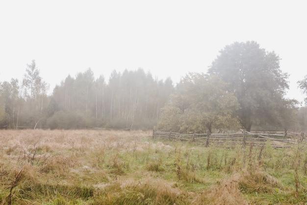 Живописный образ живописной сельской природы в сельской местности