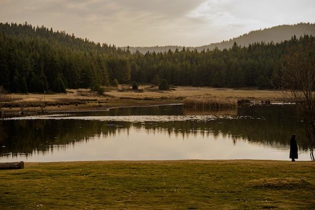 曇りの日に高山の森に囲まれた風光明媚な湖