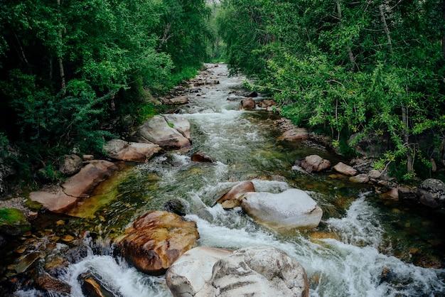 森の中の緑豊かな茂みの中で緑の水と美しいマウンテンクリークのある風光明媚な風景