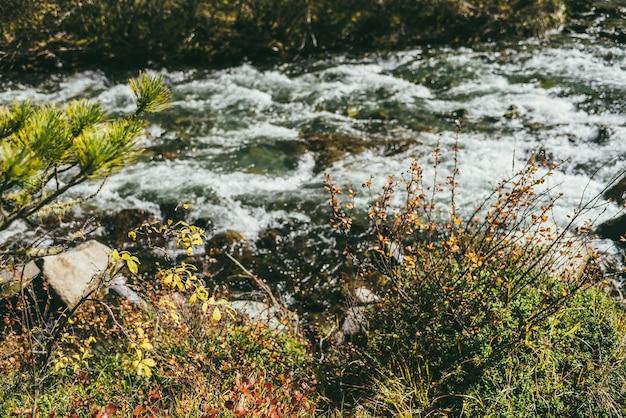秋の澄んだマウンテンクリークのボケ味の背景に黄色と赤の葉を持つ枝のある風光明媚な風景。美しい黄金色の葉と山川のある秋の森のカラフルな風景。