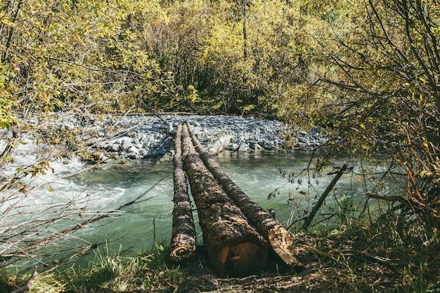 日差しの中で野生の秋の森の山川に架かる丸太橋のある風光明媚な風景。晴れた日には木々や茂みに囲まれた美しい川のある鮮やかな秋の風景。秋の山の小川。