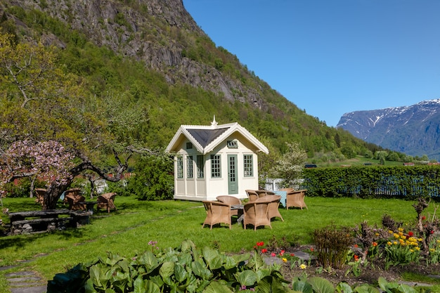 Scenic landscapes of the norwegian fjords