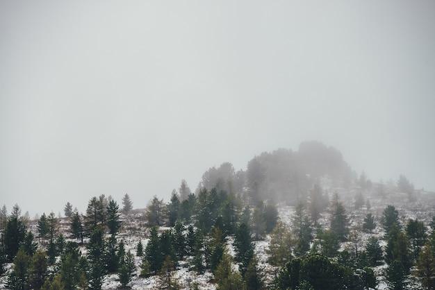針葉樹のある雪に覆われた丘の上に鋭い岩がある風光明媚な山の風景。雪の森と山頂に木がある岩だらけの先のとがった山頂。降雪の秋の緑のトウヒと黄色のカラマツ