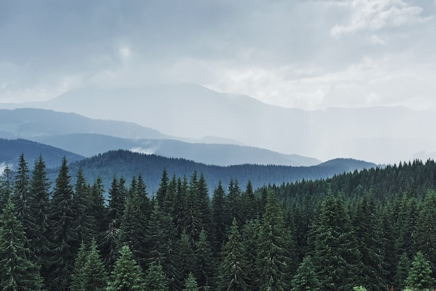 Scenic mountains landscape after rain. carpathians of ukraine.