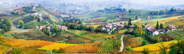 風光明媚な自然。ピエモンテの黄金のブドウ畑。イタリアの有名なブドウ畑