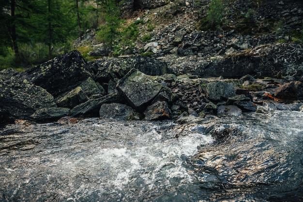 Живописный природный ландшафт с золотым солнечным сиянием в потоке чистой воды. атмосферный горный пейзаж с замшелыми камнями в прозрачном горном ручье. горный ручей среди скал с мхами и лишайниками