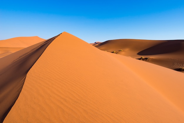 Scenic ridges of sand dunes in sossusvlei, namib naukluft national park, best tourist and travel attraction in namibia.