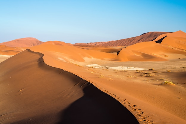 Scenic ridges of sand dunes in sossusvlei